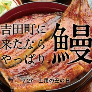 吉田に来たらやっぱり、鰻!