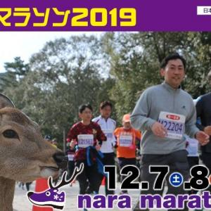 奈良マラソンを走ってきた(後編)