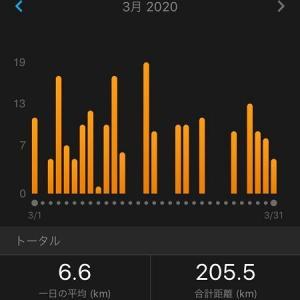 2020年3月の練習内容振り返り、走行距離は205km