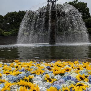 雨上がりの国営昭和記念公園