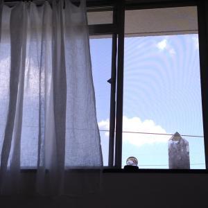 窓辺のクリスタルと芍薬