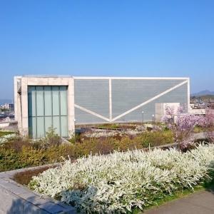 【南河内探訪】大阪府立狭山池博物館(大阪狭山市)