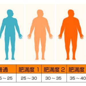 日本健康マスター検定に向けて「肥満の話し」(7)