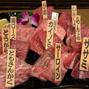 大井町ぶらり「焼肉 乙ちゃん 本店」いい店と出会えた!
