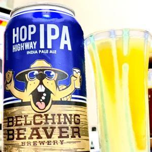 クラフトビール 家飲みでもめっちゃ美味しい IPA 旨︎