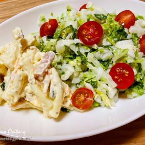 白菜コールスローとお惣菜のマカロニ