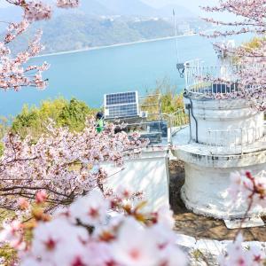 秘境灯台で秘境感あふれるお花見ライド-しまなみ海道秘境ライド2.5-