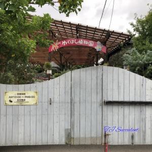ポンピドゥのカエル・・・ゆくはし植物園。