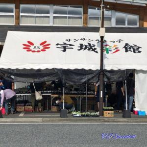 熊本遠征・・・宇城彩館で宮嶋園芸さん。
