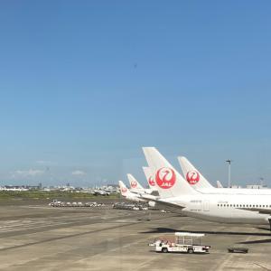 ☆『うちの客室乗務員は非常に優秀です』JAL赤坂社長