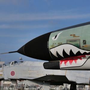 かつては空を飛んだサメ