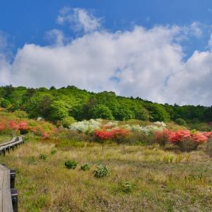 鹿沼の小尾瀬、井戸湿原 横根高原