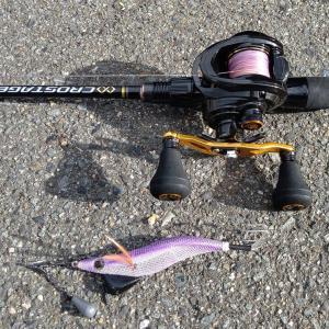 タコ釣り!この時期でも岸からタコが釣れる!