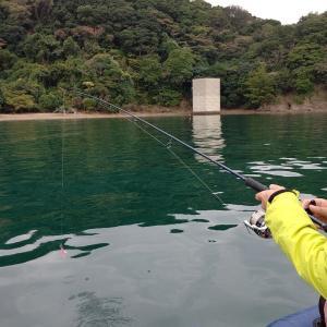 100均の釣り道具ってコスパ最高!