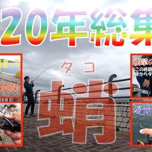 タコ釣りが大好きな全ての方へ!2020年総集編!