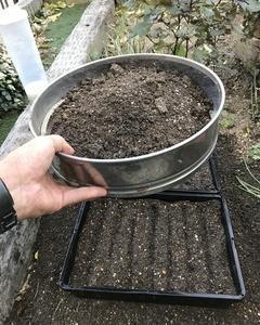 タマネギの育て方2018-2019(栽培方法)植えつけ編