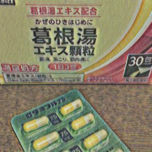 頼りになる薬(葛根湯&タミフル)と食品たち