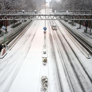 2月1日はまたしても雪?