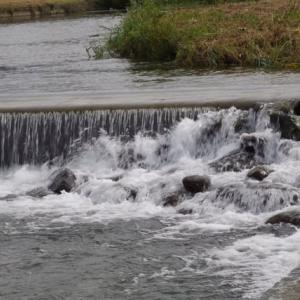 河畔はもう秋