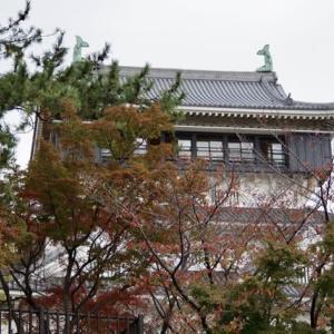 小倉城にも紅葉の訪れ・・でも