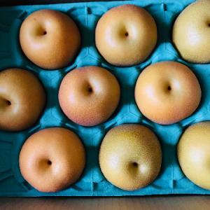 梨が来た!