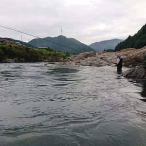 今シーズン最後の長良川