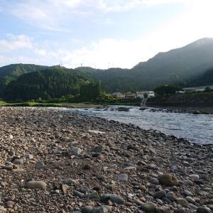 長良川郡上で鮎釣り。やっと今シーズン開幕!!