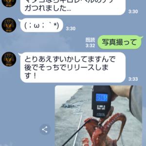淡路島タコ釣り調査