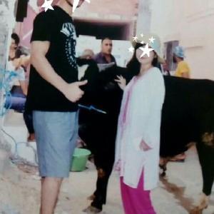 チュニジアの結婚式⑦牛を引き連れて