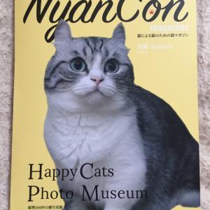 NanCon magazineに載せていただきました^^
