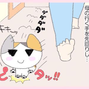 第36話 : いきなり☆ゴロ~ン!