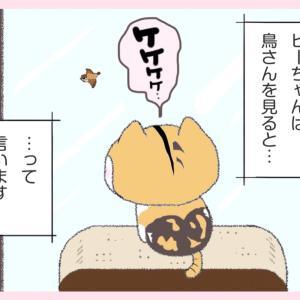 第37話 : ケケケケケ~