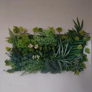 ダイソー商品で 壁面緑化…風