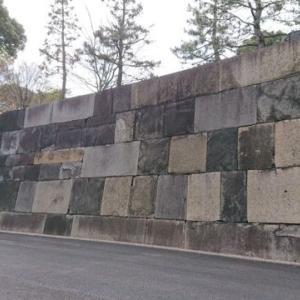 江戸城の石垣から八重洲の桜へ