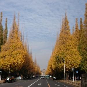 神宮界隈の紅葉と東京夜景さんぽ