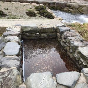 湯原温泉の足湯!
