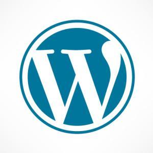 【ブログで起こった奇跡…】Googleを神と崇めるようになったWordPressブログピーク時の1記事のアクセス数を公開!オーガニックサーチ1位の力とコアアルゴリズムアップデートの怖さ