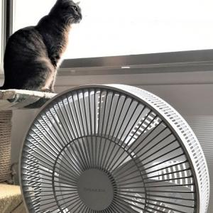 """扇風機の前で「わぁ""""ぁ""""~♪」って声が震えるのは? そして録音した自分の声に驚く"""