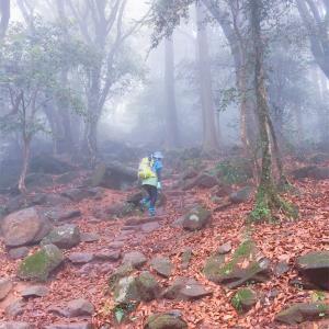◆富士山から間があいたけど鍋割山へ行くよ