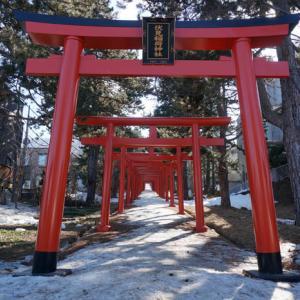 札幌伏見稲荷神社【幻想的な冬の鳥居道】