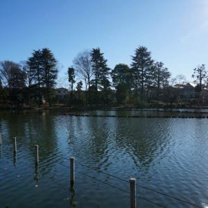 善福寺公園 【武蔵野三大湧水池】