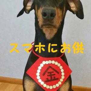 金太郎 time ~ お供すっぺ♡