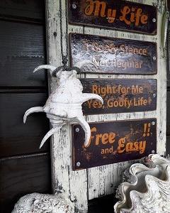 水字貝と書いて…