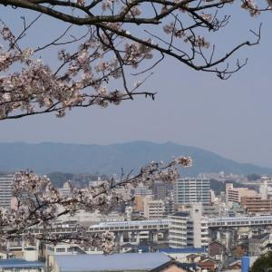 姫路城とN700系新幹線 (今日はしろの日 2019年4月  オマケは大阪城と京阪電車)