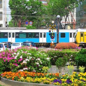静岡鉄道は日吉町駅付近A3000と花の風景 (2019年4月 在庫でドン)