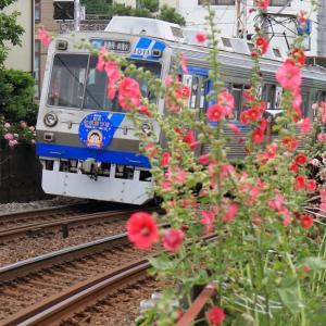 2012年 静岡鉄道は清水七夕まつりHM1000系 (オマケは清水銀座アーケード)