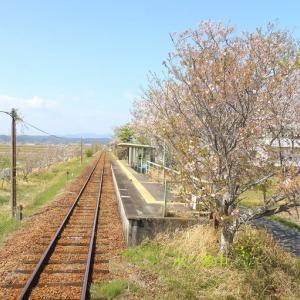 天竜浜名湖鉄道 春の車窓その5(2021年4月 いこいの広場-桜木)