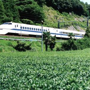 東海道新幹線は菊川付近を走る300系新幹線(在庫でゴー 今日は八十八夜)