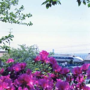 東海道本線は三河大塚駅から見える100系新幹線と桜 (あの年の春 在庫でゴー)
