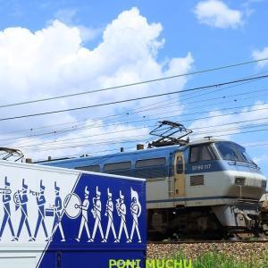 EF66 117 1092レほか (2021年6月 地元陸橋下 ブラバントラックシリーズ)